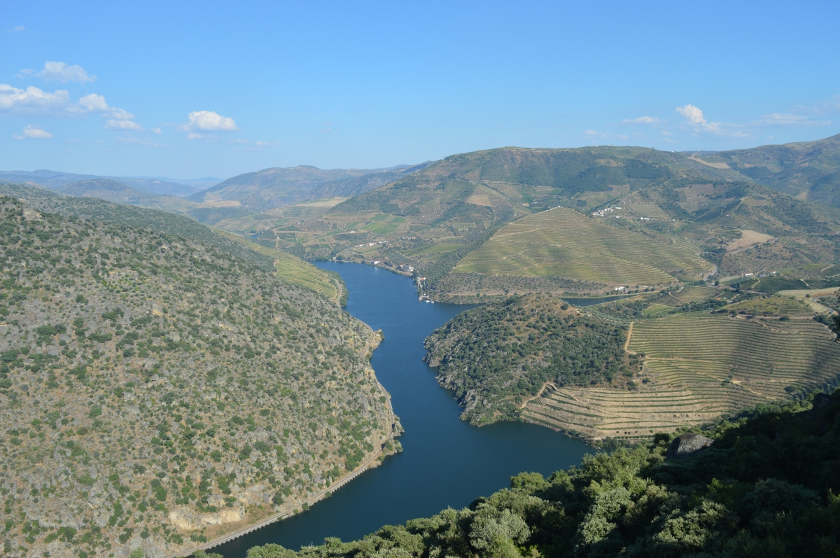 Cosa vedere nel nord del Portogallo: la Valle del Douro